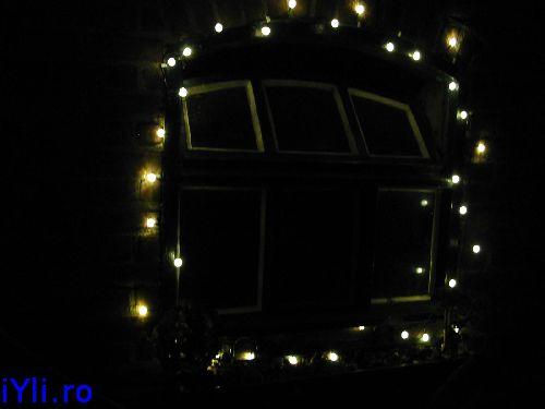 garden-lights 2